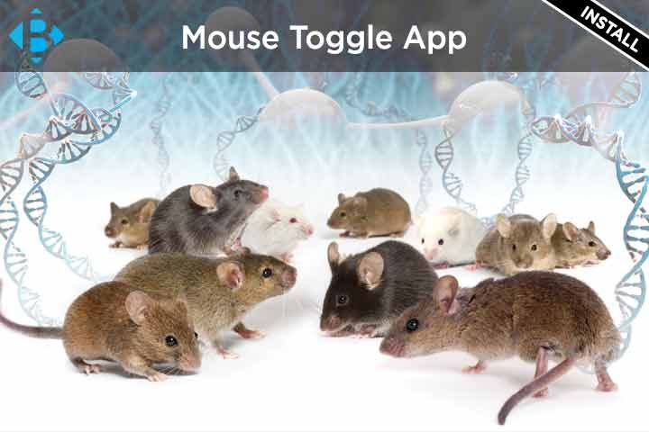 mouse toggle for fire tv 1.06 apk download